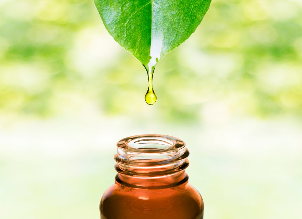 where-is-squalane-oil-from
